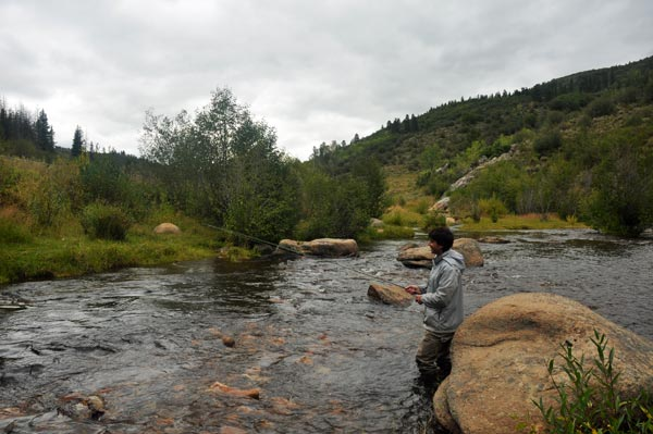 fly fishing steambot colorado