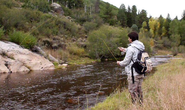 flyfishing in steamboat springs colorado
