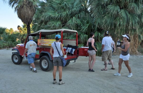 Red Jeep Desert tours