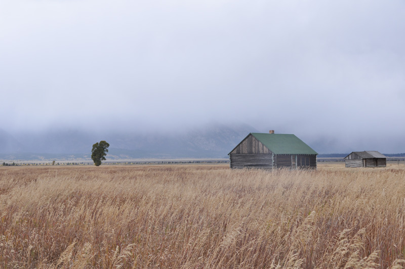 grand teton plains
